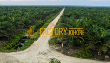 Kota Tinggi Agricultural Land For Sale 40psf only